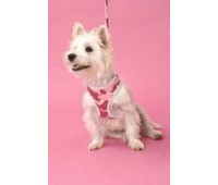 Puchi Softy Harness in Pink Camouflage